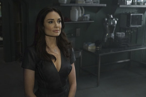 Aida Agents Of Shield