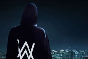 Alan Walker Standing On Edge