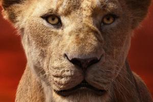 Alfre Woodard As Sarabi In The Lion King 2019 4k Wallpaper