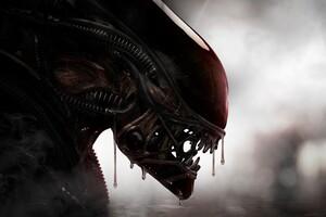 Aliens Xenomorph Creature 4k Wallpaper