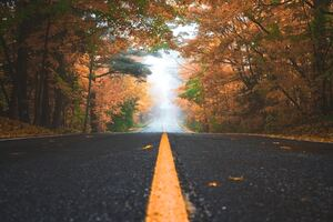 Alone Road Autumn 4k Wallpaper
