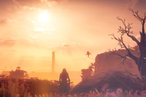 Aloy Watching Sunset Wallpaper