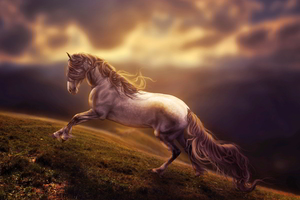 Amazing Horse Art