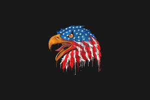 American Flag Eagle Minimal 4k Wallpaper