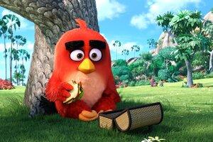 Angry Birds Main Character