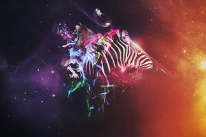 Animals Colorful Abstract Wallpaper