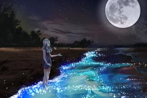 Anime Girl At Seashore Dark Moon