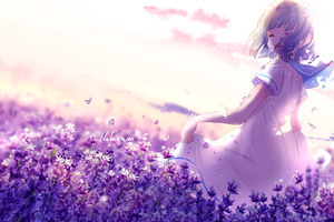 Anime Short Hairs Butterfly Dress Flowers Wallpaper