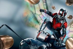 Ant Man 2015 Movie Wallpaper