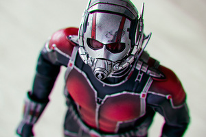 Ant Man A Soldier Size Of An Insect Wallpaper