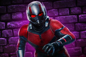 Ant Man New Wallpaper
