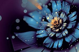 Apophysis Bloom Flower Digital Art Wallpaper
