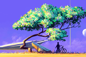 Artistic Nature View Bicycle 4k Wallpaper