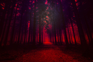 Artistic Red Forest Wallpaper