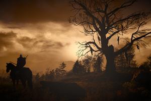 Artwork The Witcher 3 Wild Hunt Wallpaper