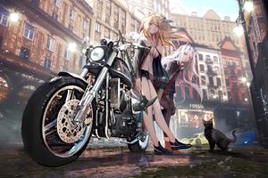 Asian Anime Girl With Bike Alongside Cat