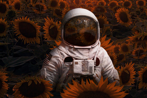 Astronaut In Sunflowers Field 4k