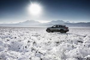 Audi Q8 55 TFSI Quattro S Line 2018 Rear