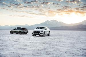 Audi Q8 Cars