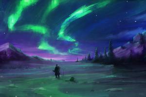 Aurora Borealis Sky 4k