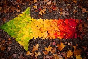 Autumn Leaves arrow