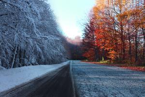 Autumn Vs Winter 5k Wallpaper