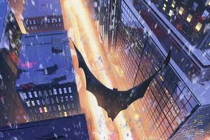 Batman Cape Flying Artwork