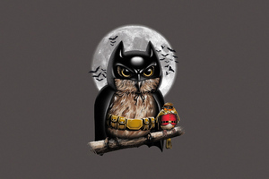 Batman Owl Robin Digital Art Wallpaper