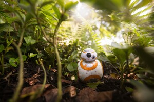 BB8 Star Wars Wallpaper
