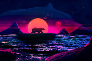 Bear Soul Of The Arctic