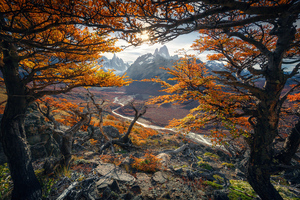 Beautiful Autumn Colours In Patagonia 4k Wallpaper