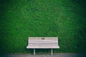Beautiful Bench In Garden Wallpaper