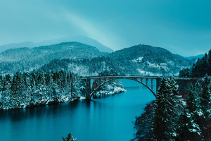 Beautiful Bridge Between Lake In Forest 4k Wallpaper