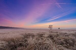 Beautiful Landscape Sky
