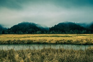Beautiful Nature Mountains Fog Trees