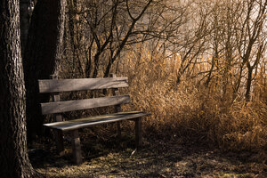 Bench Bank Seat 5k