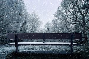 Bench Snowfall 4k