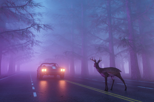 Beware Of The Deer Wallpaper