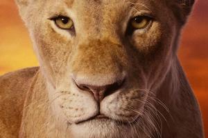 Beyonce As Nala The Lion King 2019 4k Wallpaper