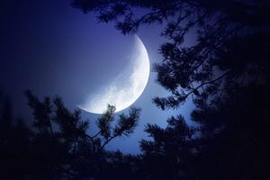Big Moon Dark Night