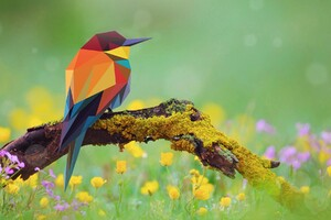 Bird Abstract Art Wallpaper