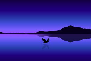 Bird Flying Over Ocean Minimal 4k