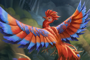 Bird Of Paradise 4k