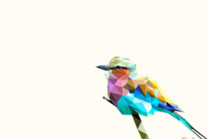 Bird Rainbow Polyart Wallpaper