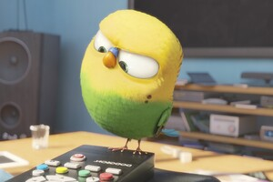 Bird Secrete Life Of Pets