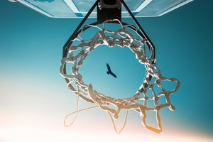 Bird View From Basketball Ring Wallpaper