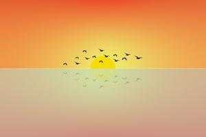 Birds Flying Sun Minimal 4k Wallpaper