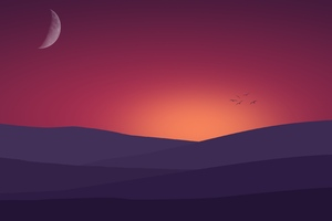 Birds Flying Towards Sunset Landscape Minimalist 4k