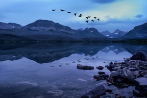 Birds Mountains Stones Evening Lake Wallpaper