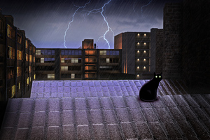 Black Cat On Rooftop Lightning 4k Wallpaper